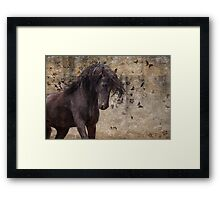 When you have a dream Framed Print