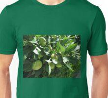 Apples Ripening - Lost Gardens of Heligan Unisex T-Shirt