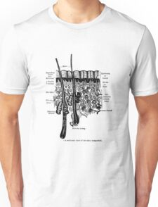 Organs of the Skin. Unisex T-Shirt