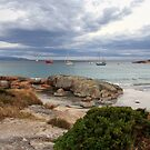 Bicheno Tasmania Australia by Doug Cliff