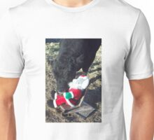 Please, Santa! Unisex T-Shirt