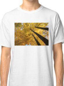 Golden Canopy - Three Trees Horizontal Classic T-Shirt