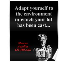 Adapt Yourself To The Environment - Marcus Aurelius Poster