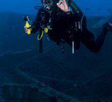 Diver at the MS Zenobia shipwreck.  Sticker