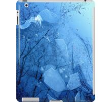 A different Perspective.........Icy Lake iPad Case/Skin