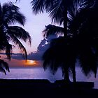 Sunset in Paradise by AspenWillow