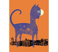 Night Cat owns the City Photographic Print