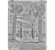 OV Pier iPad Case/Skin