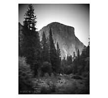 Yosemite National Park, El Cap Photographic Print