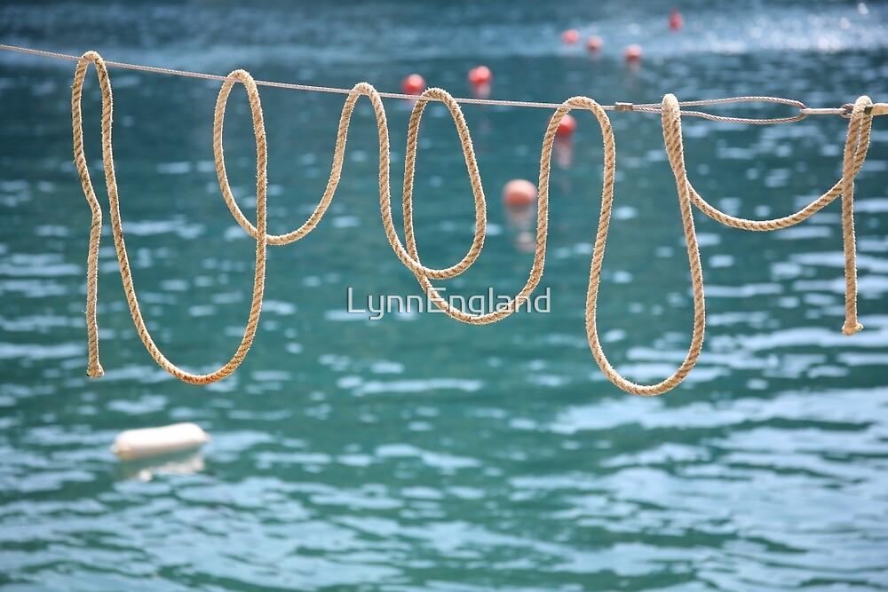 Ligurian loops ....... by LynnEngland