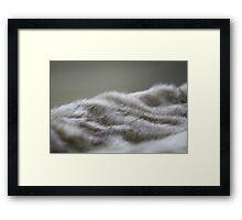 Fur.... Framed Print