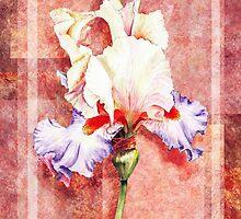 Decorative Iris Painting by Irina Sztukowski