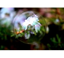 One Bubble, One Photographer Photographic Print