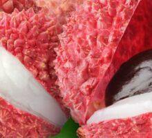 Fresh lychee fruits Sticker