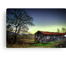 The old shack in the forest Canvas Print
