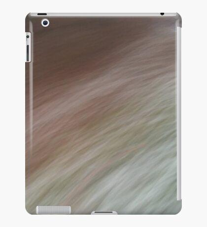 Brush past iPad Case/Skin