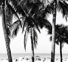 Dreaming Of Summer by jaeepathak