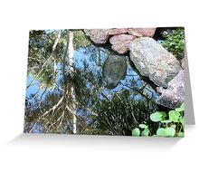 Pond Reflections Greeting Card