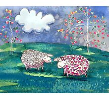 Sheep Lovers  Photographic Print