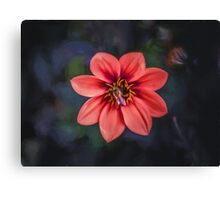 Red Dahlia  (GO2) Canvas Print