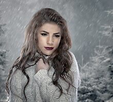Winter's Chill by akeyphoto