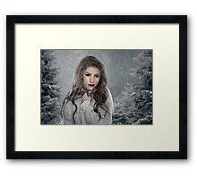 Winter's Chill Framed Print