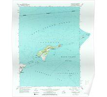 New York NY Plum Island 129055 1954 24000 Poster