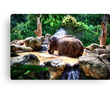 Jumbo Shower       (RVR) Canvas Print