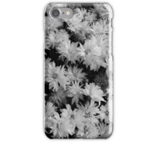 Whimsy Daisies iPhone Case/Skin