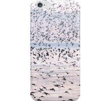Swirling Flock iPhone Case/Skin