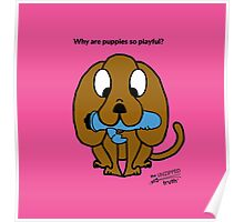 Why are puppies so playful? Poster