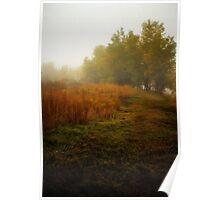 Fog #6 Poster
