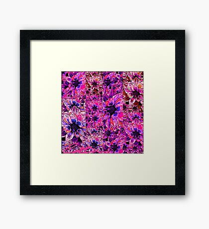 Pink And Blue Flowers Framed Print