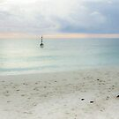Cottesloe Beach 2 by Andrew  Makowiecki