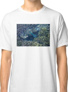 Tropical fishes in the Maldives, Laccadivian Sea Classic T-Shirt