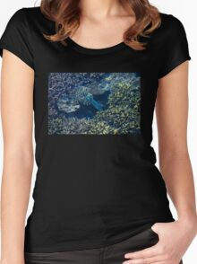 Tropical fishes in the Maldives, Laccadivian Sea Women's Fitted Scoop T-Shirt