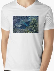 Tropical fishes in the Maldives, Laccadivian Sea T-Shirt