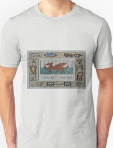Cymru, Wales T-Shirt