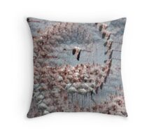 CHANGE YOUR PERSPECTIVE AND SOAR! Throw Pillow