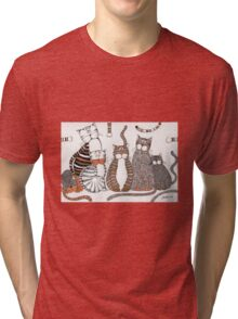 Purrfection Tri-blend T-Shirt