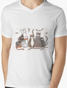 Purrfection Mens V-Neck T-Shirt