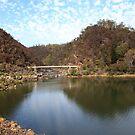 Cataract Gorge  Tasmania Australia by Doug Cliff