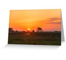 Sunset over the meadow Greeting Card
