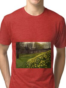 Daffodils in April Tri-blend T-Shirt