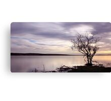 Lonely Tree on Colliford Lake Canvas Print