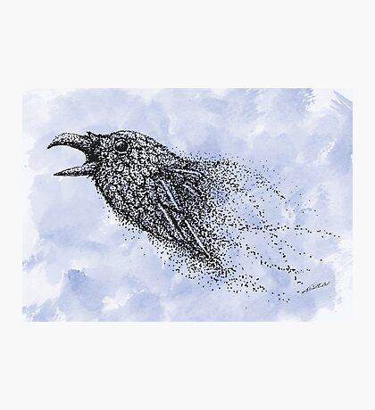 Dot work Crow on Watercolour Photographic Print