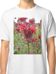 Bee on Red Flower Classic T-Shirt