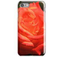 Peach Colored Rose iPhone Case/Skin