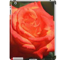 Peach Colored Rose iPad Case/Skin