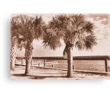 Kissimmee Boat Dock Canvas Print